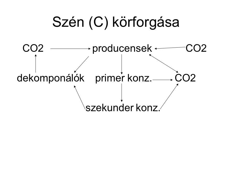 Szén (C) körforgása CO2 producensek CO2 dekomponálók primer konz. CO2 szekunder konz.