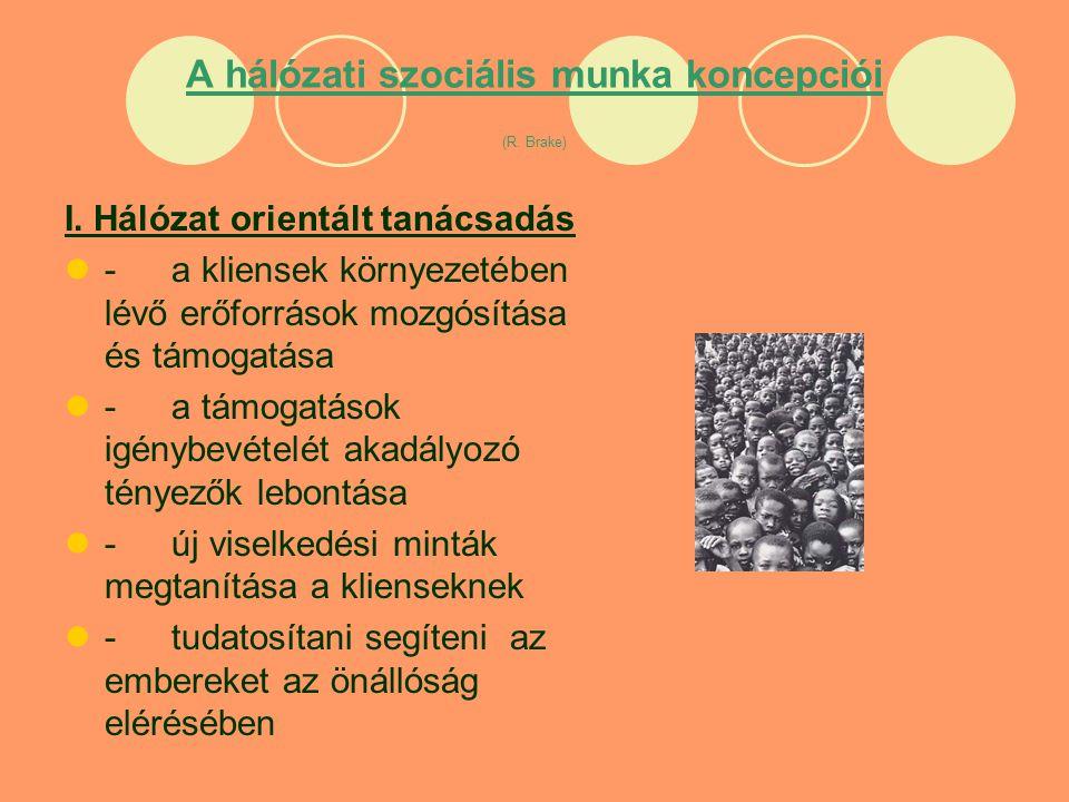 A hálózati szociális munka koncepciói (R. Brake) I.