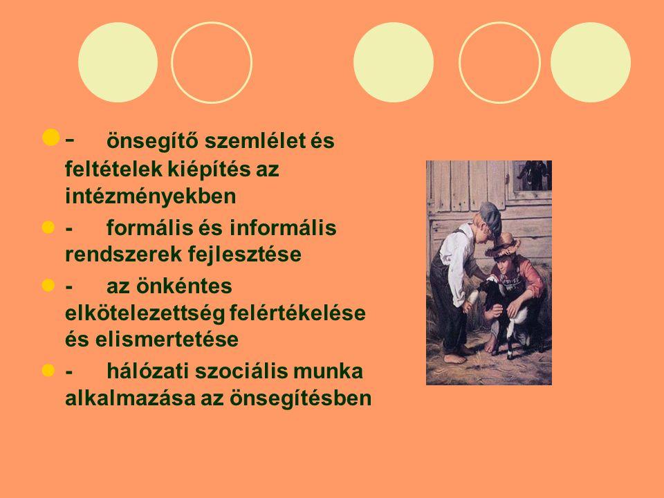 - önsegítő szemlélet és feltételek kiépítés az intézményekben -formális és informális rendszerek fejlesztése -az önkéntes elkötelezettség felértékelése és elismertetése -hálózati szociális munka alkalmazása az önsegítésben