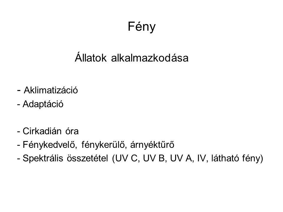 Fény Állatok alkalmazkodása - Aklimatizáció - Adaptáció - Cirkadián óra - Fénykedvelő, fénykerülő, árnyéktűrő - Spektrális összetétel (UV C, UV B, UV