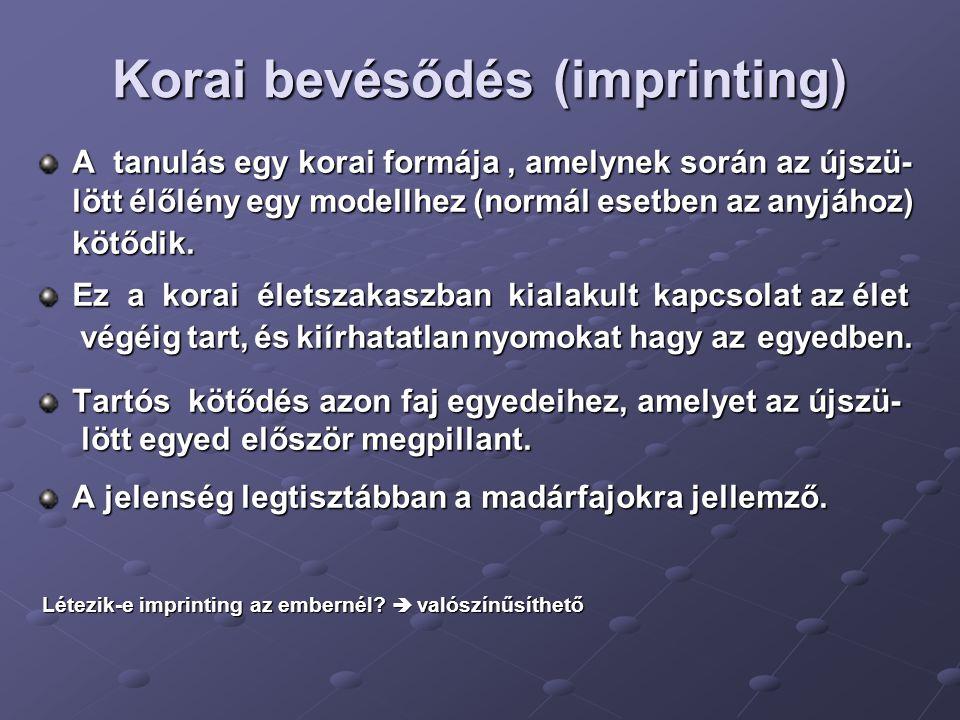 Korai bevésődés (imprinting) A tanulás egy korai formája, amelynek során az újszü- lött élőlény egy modellhez (normál esetben az anyjához) kötődik. Ez