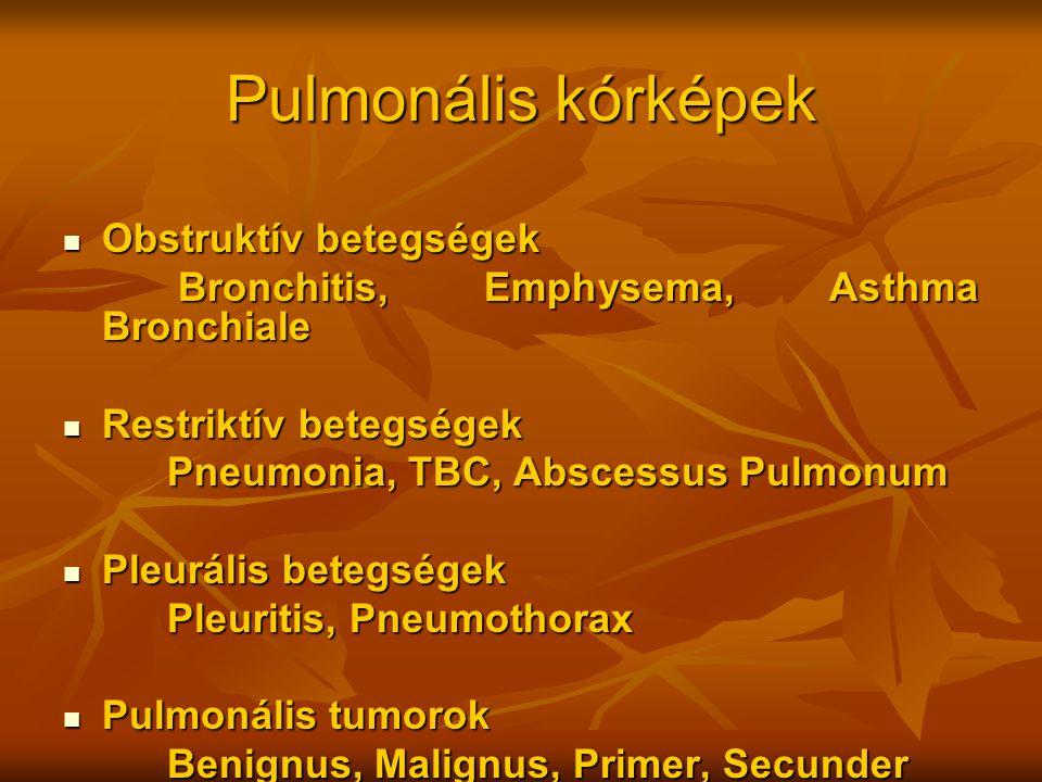 Pulmonális kórképek Obstruktív betegségek Obstruktív betegségek Bronchitis, Emphysema, Asthma Bronchiale Bronchitis, Emphysema, Asthma Bronchiale Rest