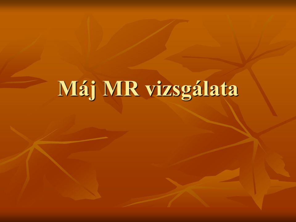 Máj MR vizsgálata