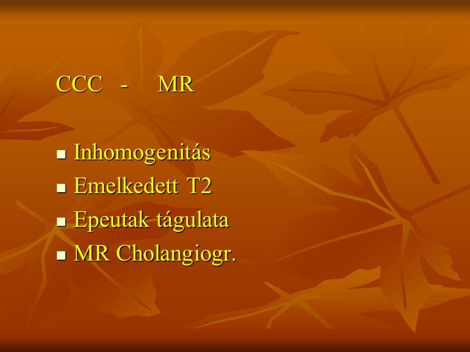 CCC - MR Inhomogenitás Inhomogenitás Emelkedett T2 Emelkedett T2 Epeutak tágulata Epeutak tágulata MR Cholangiogr. MR Cholangiogr.