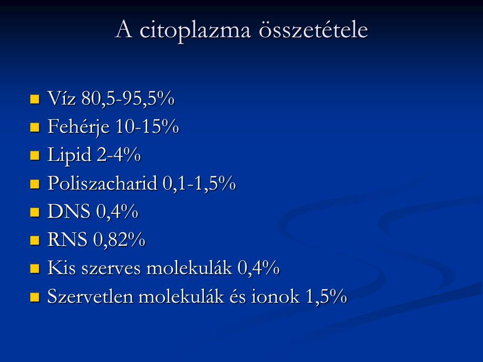 A citoplazma összetétele Víz 80,5-95,5% Víz 80,5-95,5% Fehérje 10-15% Fehérje 10-15% Lipid 2-4% Lipid 2-4% Poliszacharid 0,1-1,5% Poliszacharid 0,1-1,