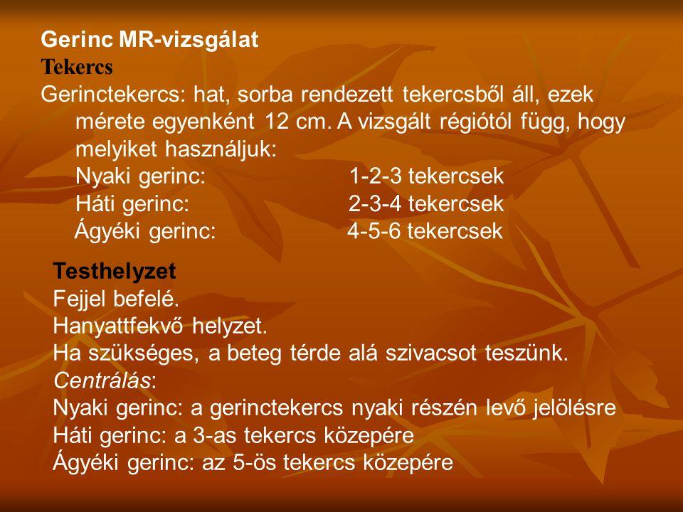 Gerinc MR-vizsgálat Tekercs Gerinctekercs: hat, sorba rendezett tekercsből áll, ezek mérete egyenként 12 cm.