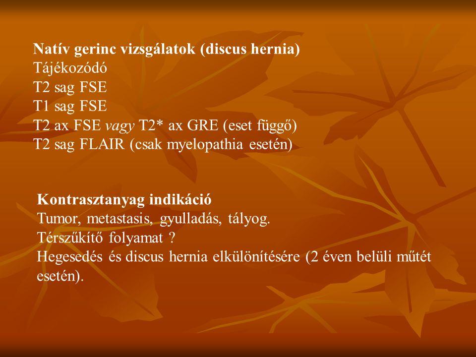 Natív gerinc vizsgálatok (discus hernia) Tájékozódó T2 sag FSE T1 sag FSE T2 ax FSE vagy T2* ax GRE (eset függő) T2 sag FLAIR (csak myelopathia esetén) Kontrasztanyag indikáció Tumor, metastasis, gyulladás, tályog.