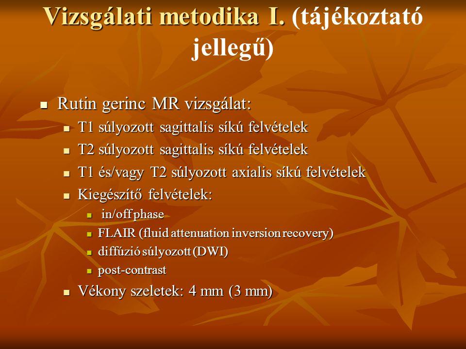 Vizsgálati metodika I.Vizsgálati metodika I.