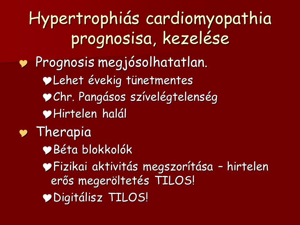 Hypertrophiás cardiomyopathia prognosisa, kezelése  Prognosis megjósolhatatlan.  Lehet évekig tünetmentes  Chr. Pangásos szívelégtelenség  Hirtele