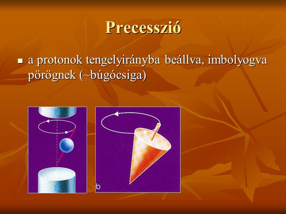 Precesszió a protonok tengelyirányba beállva, imbolyogva pörögnek (~búgócsiga) a protonok tengelyirányba beállva, imbolyogva pörögnek (~búgócsiga)
