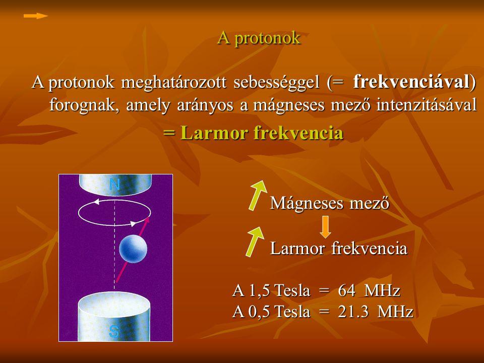 A protonok meghatározott sebességgel (= frekvenciával) forognak, amely arányos a mágneses mező intenzitásával = Larmor frekvencia Mágneses mező Mágnes