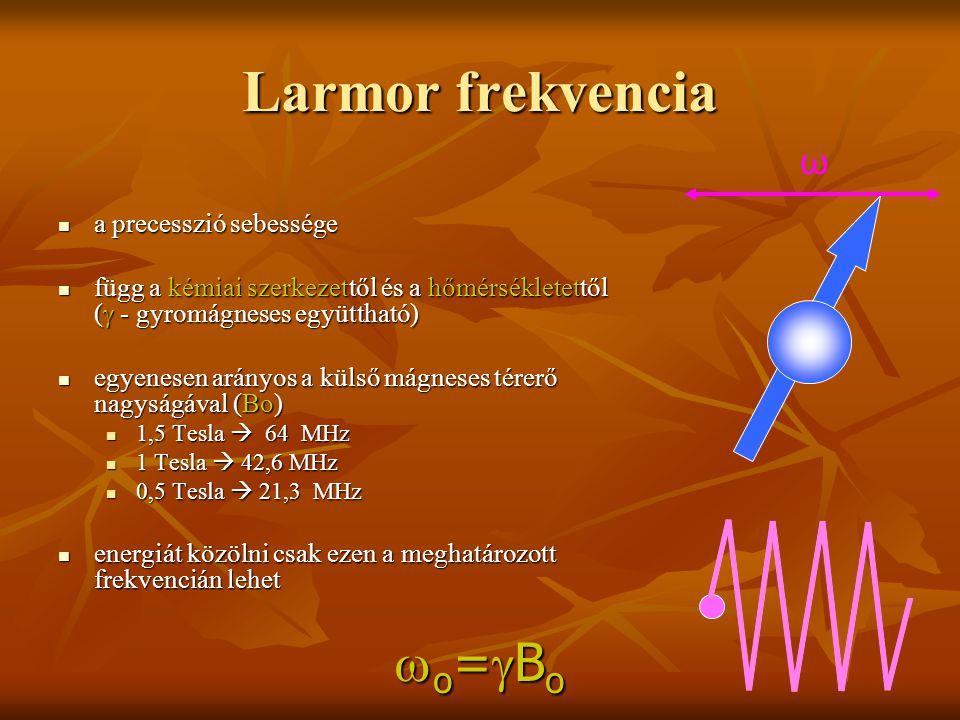 Larmor frekvencia a precesszió sebessége a precesszió sebessége függ a kémiai szerkezettől és a hőmérsékletettől (  - gyromágneses együttható) függ a