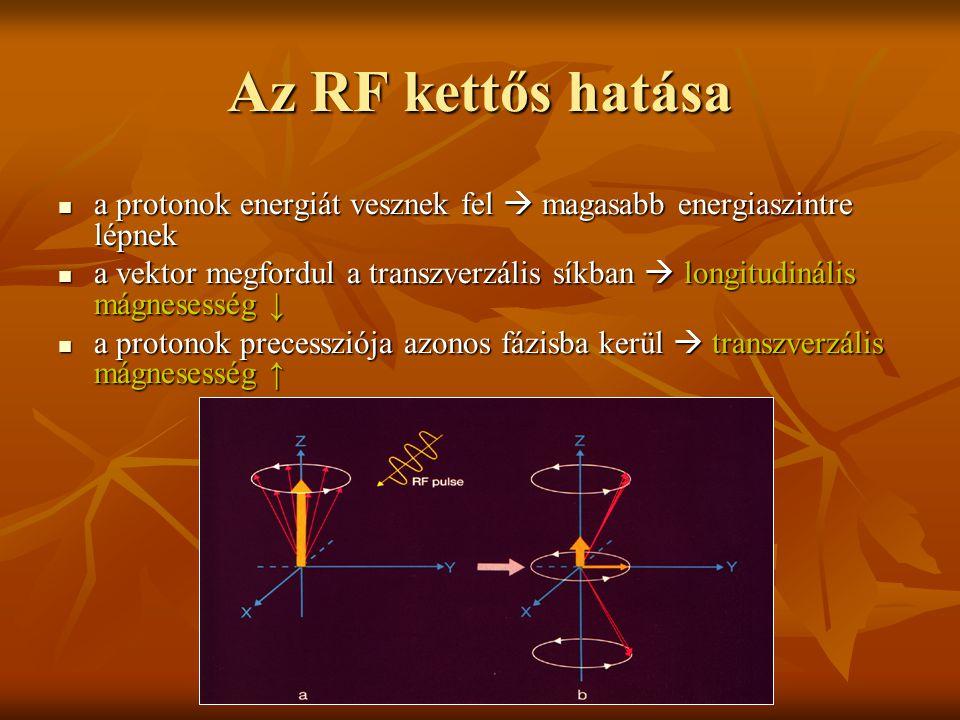 Az RF kettős hatása a protonok energiát vesznek fel  magasabb energiaszintre lépnek a protonok energiát vesznek fel  magasabb energiaszintre lépnek