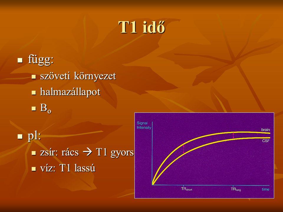 T1 idő függ: függ: szöveti környezet szöveti környezet halmazállapot halmazállapot B o B o pl: pl: zsír: rács  T1 gyors zsír: rács  T1 gyors víz: T1