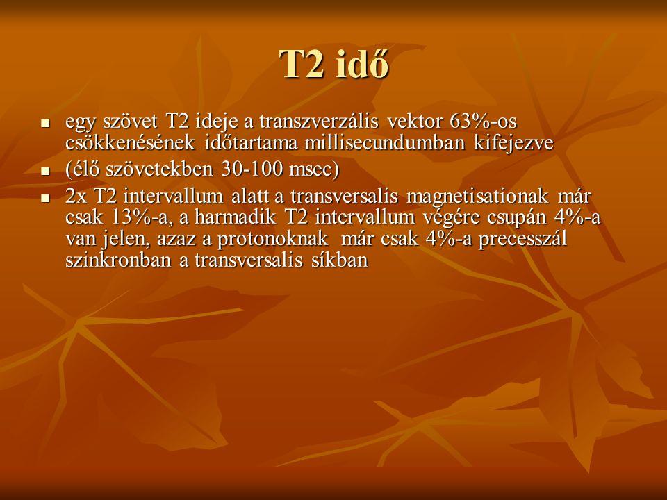 T2 idő egy szövet T2 ideje a transzverzális vektor 63%-os csökkenésének időtartama millisecundumban kifejezve egy szövet T2 ideje a transzverzális vek