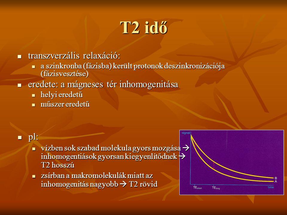 T2 idő transzverzális relaxáció: transzverzális relaxáció: a szinkronba (fázisba) került protonok deszinkronizációja (fázisvesztése) a szinkronba (fáz