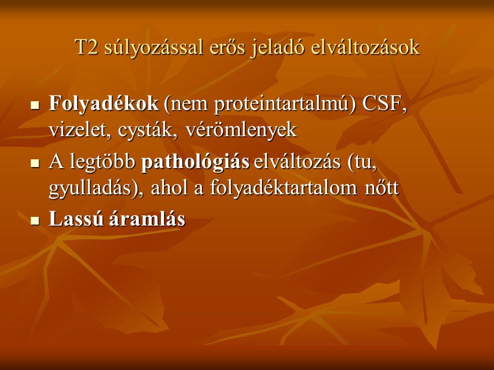 T2 súlyozással erős jeladó elváltozások Folyadékok (nem proteintartalmú) CSF, vizelet, cysták, vérömlenyek Folyadékok (nem proteintartalmú) CSF, vizel