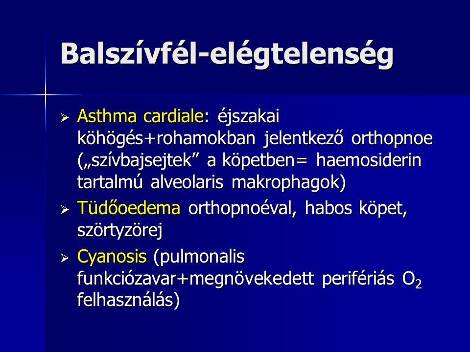 """Balszívfél-elégtelenség  Asthma cardiale: éjszakai köhögés+rohamokban jelentkező orthopnoe (""""szívbajsejtek"""" a köpetben= haemosiderin tartalmú alveola"""