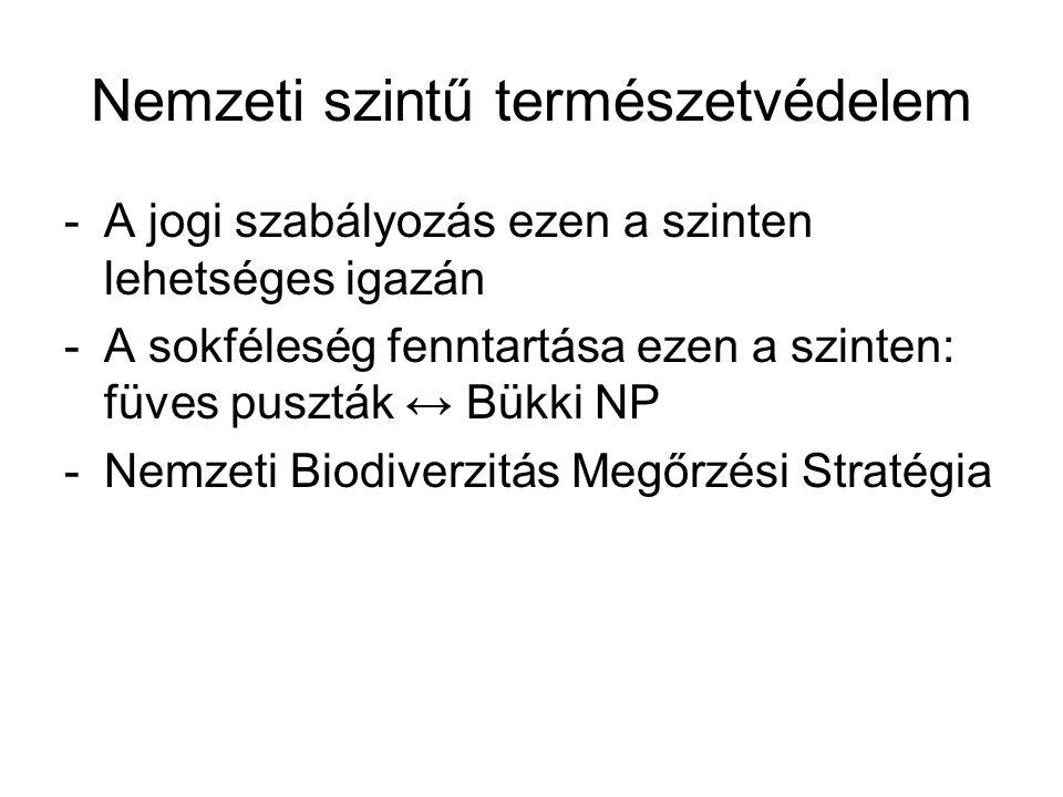 Kontinens léptékű természetvédelem -Törekvések a természetvédelem európai integrálására -Fajok biogeográfiai areája, migrációs útvonalak nem érzékelik a politikai határokat  életközösségek fennmaradása -Páneurópai Biológiai- és Tájdiverzitás Megőrzési Stratégia/1996/ -Corine program