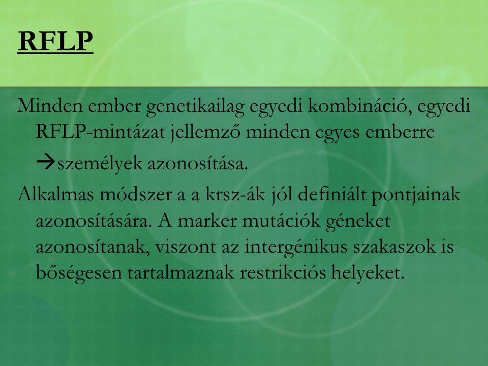 RFLP Minden ember genetikailag egyedi kombináció, egyedi RFLP-mintázat jellemző minden egyes emberre  személyek azonosítása.