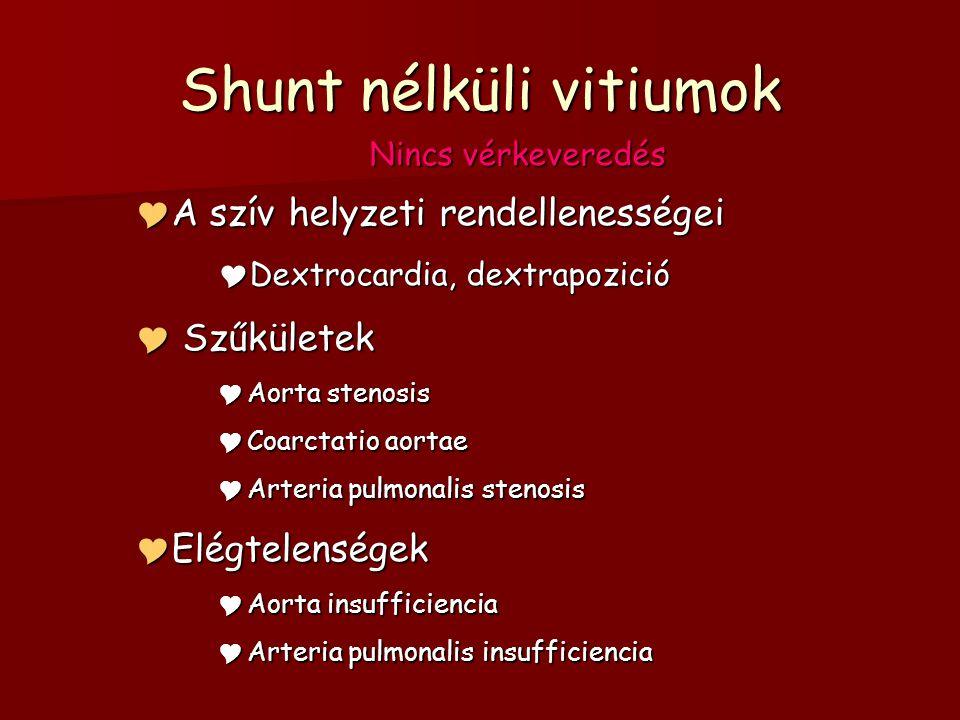 Shunt nélküli vitiumok Nincs vérkeveredés  A szív helyzeti rendellenességei  Dextrocardia, dextrapozició  Szűkületek  Aorta stenosis  Coarctatio