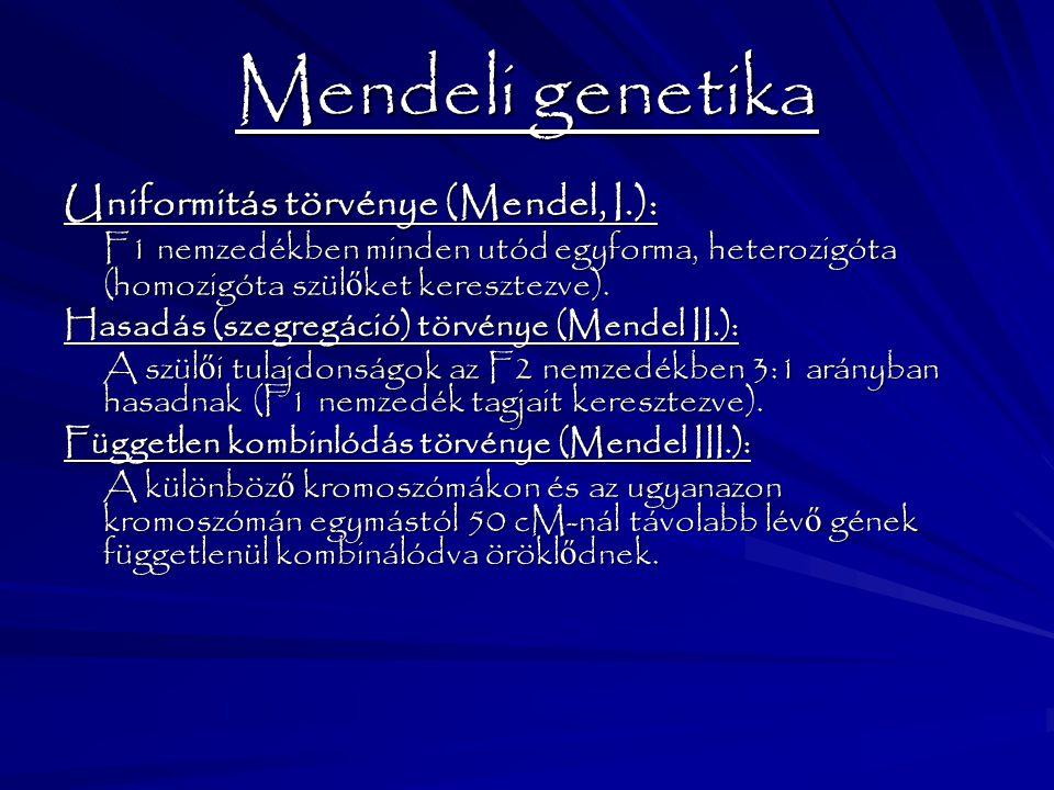 Mendeli genetika Uniformitás törvénye (Mendel, I.): F1 nemzedékben minden utód egyforma, heterozigóta (homozigóta szül ő ket keresztezve). Hasadás (sz