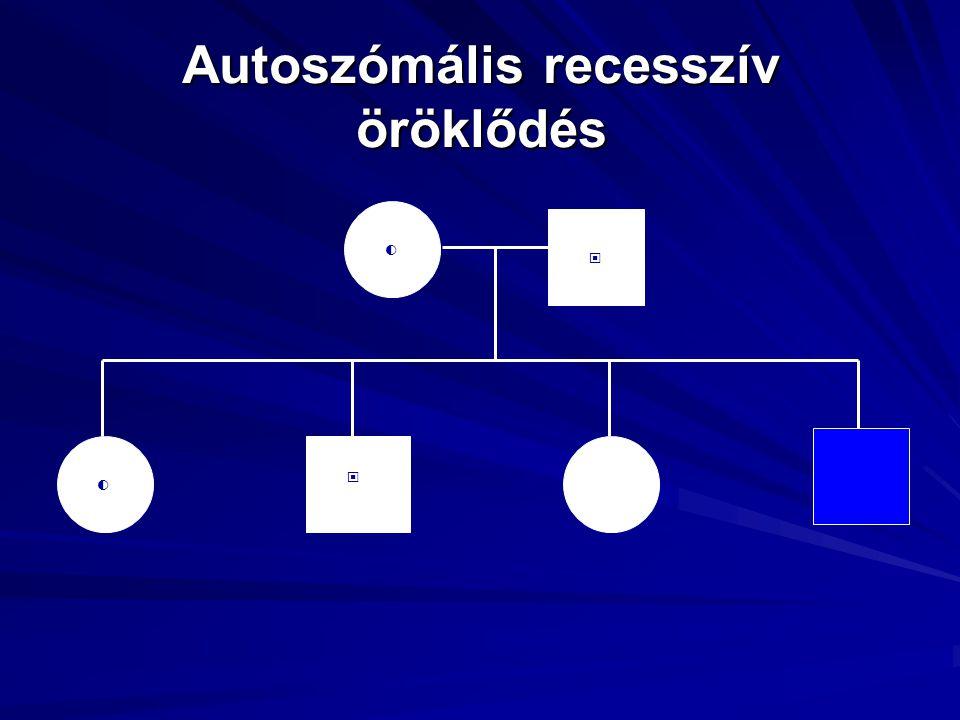 Autoszómális recesszív öröklődés ○◐ ◐ ▣ ▣