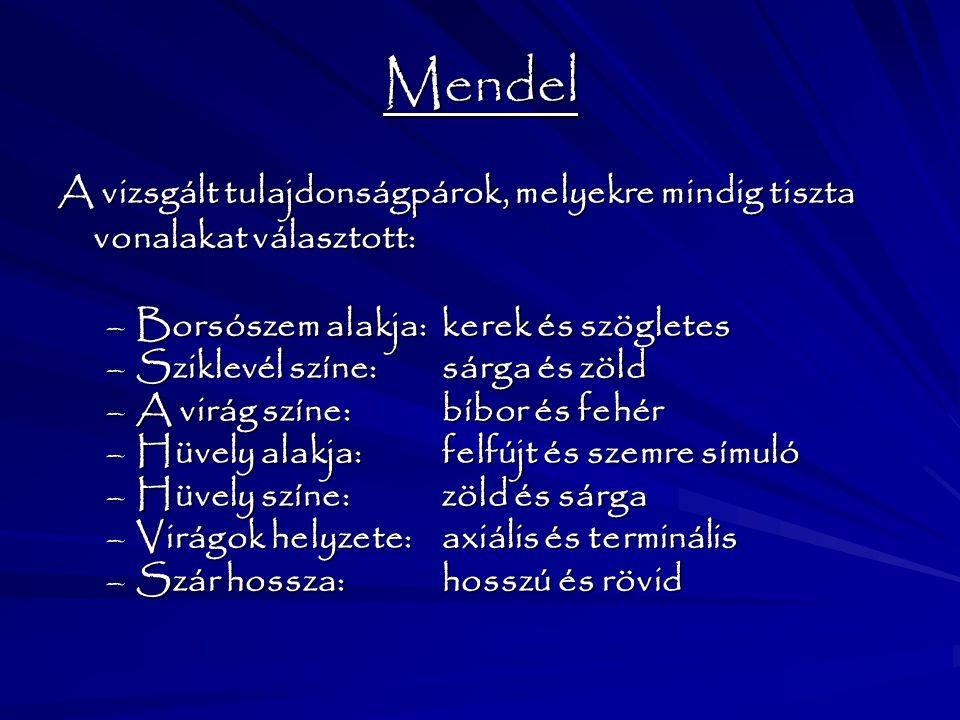Mendel A vizsgált tulajdonságpárok, melyekre mindig tiszta vonalakat választott: –Borsószem alakja: kerek és szögletes –Sziklevél színe: sárga és zöld