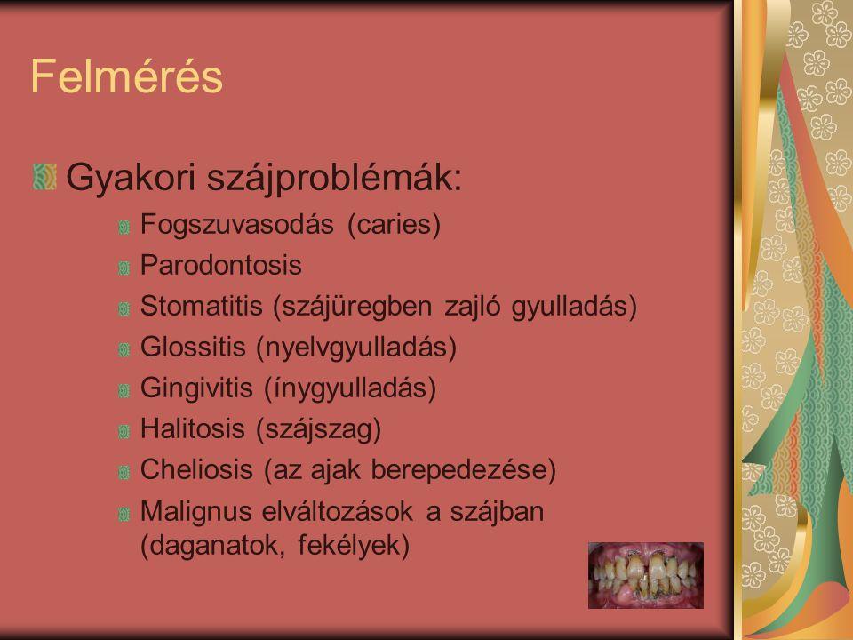 Felmérés Gyakori szájproblémák: Fogszuvasodás (caries) Parodontosis Stomatitis (szájüregben zajló gyulladás) Glossitis (nyelvgyulladás) Gingivitis (ín