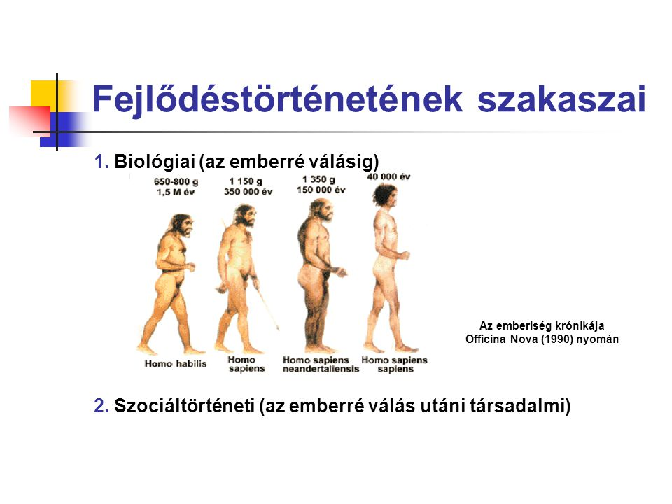 Fejlődéstörténetének szakaszai 1. Biológiai (az emberré válásig) 2. Szociáltörténeti (az emberré válás utáni társadalmi) Az emberiség krónikája Offici