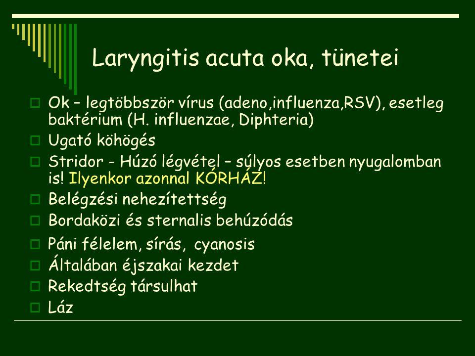 Laryngitis acuta oka, tünetei  Ok – legtöbbször vírus (adeno,influenza,RSV), esetleg baktérium (H. influenzae, Diphteria)  Ugató köhögés  Stridor -