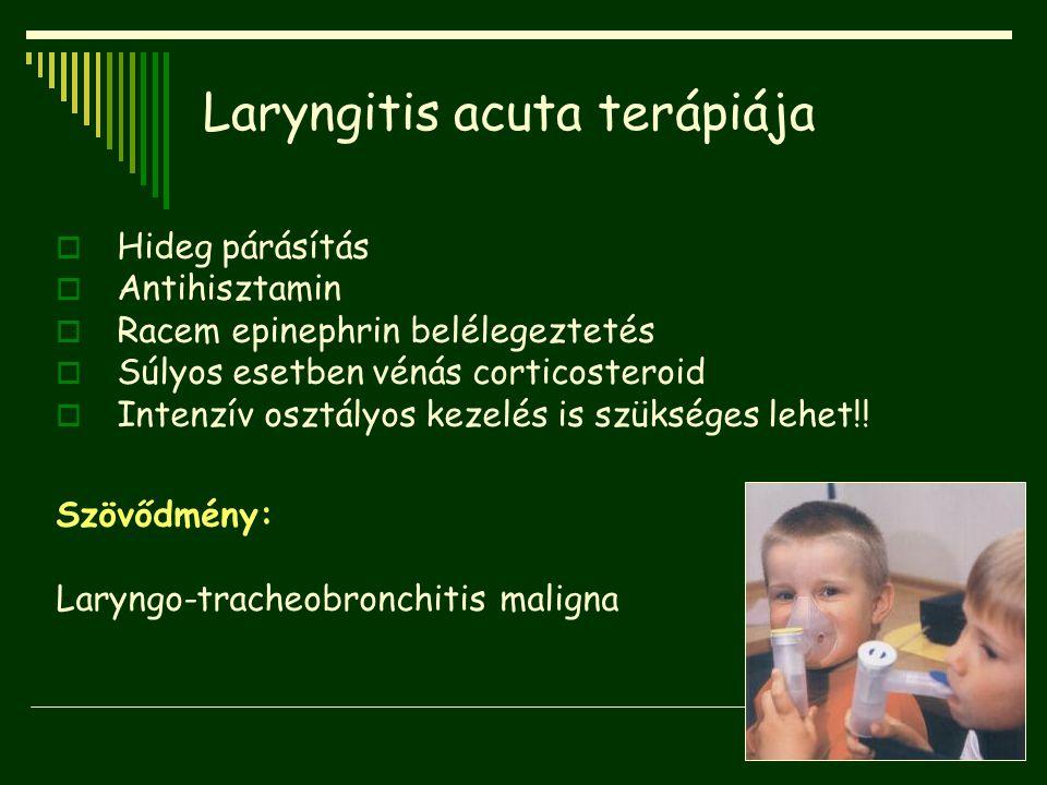 Laryngitis acuta terápiája  Hideg párásítás  Antihisztamin  Racem epinephrin belélegeztetés  Súlyos esetben vénás corticosteroid  Intenzív osztál