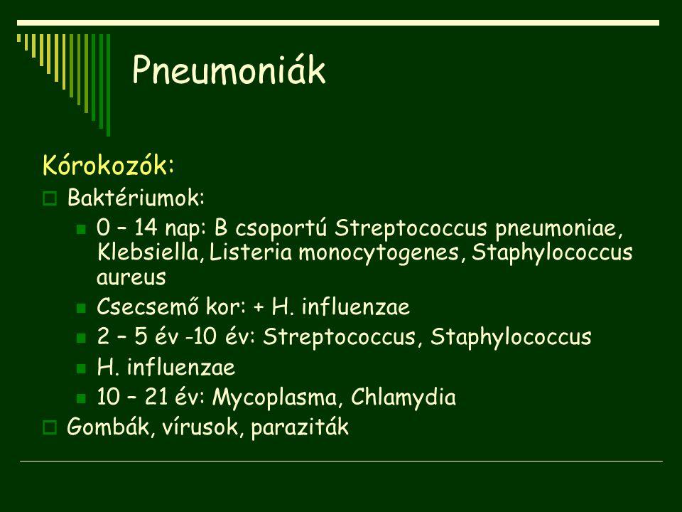 Pneumoniák Kórokozók:  Baktériumok: 0 – 14 nap: B csoportú Streptococcus pneumoniae, Klebsiella, Listeria monocytogenes, Staphylococcus aureus Csecse