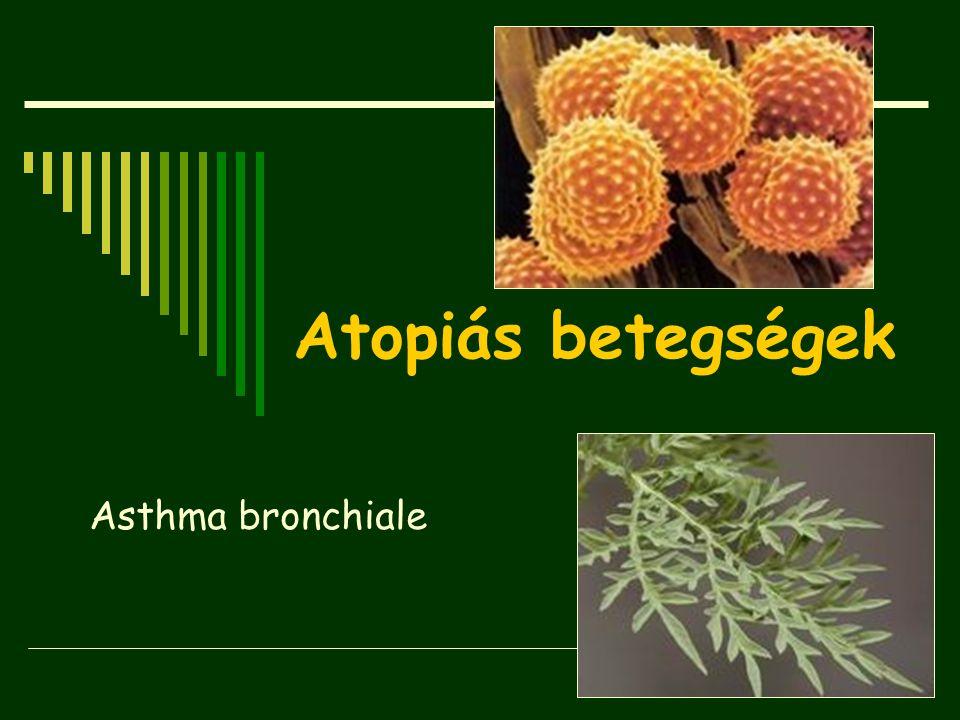 Asthma bronchiale Atopiás betegségek