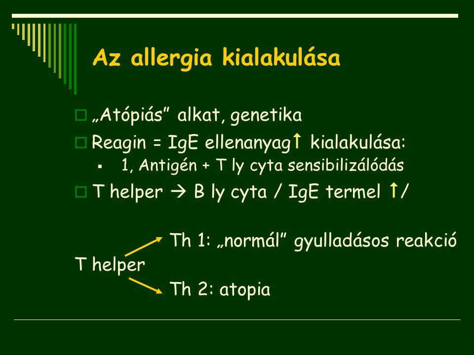 """Az allergia kialakulása  """"Atópiás"""" alkat, genetika  Reagin = IgE ellenanyag  kialakulása:  1, Antigén + T ly cyta sensibilizálódás  T helper  B"""