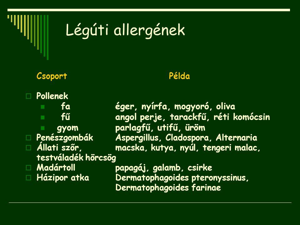 Légúti allergének Csoport Példa  Pollenek faéger, nyírfa, mogyoró, oliva fűangol perje, tarackfű, réti komócsin gyomparlagfű, utifű, üröm  Penészgom