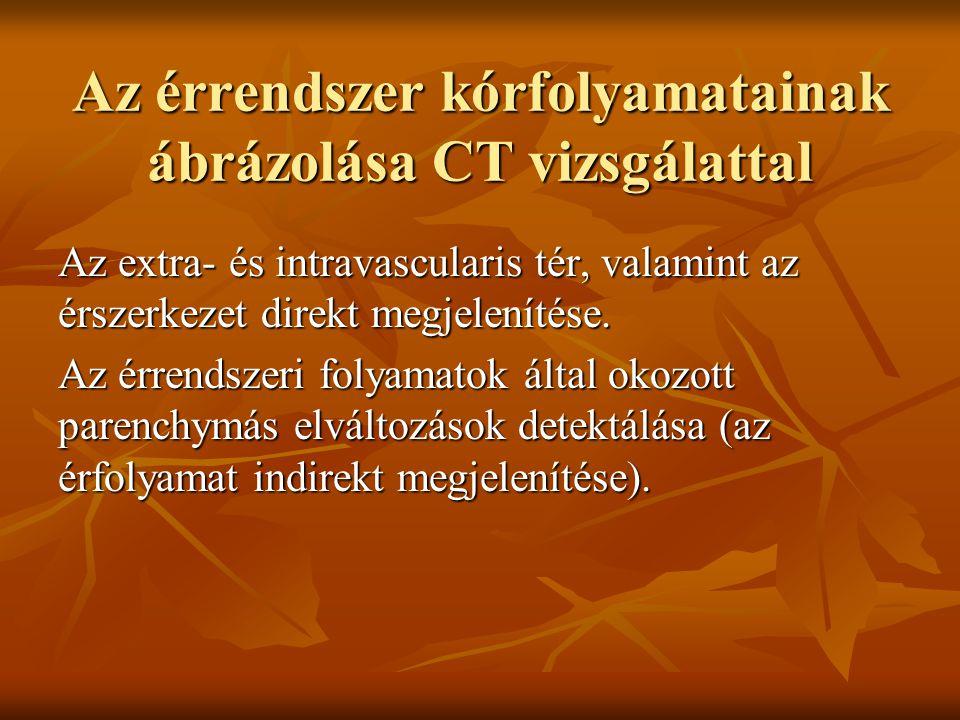 Az érrendszer kórfolyamatainak ábrázolása CT vizsgálattal Az extra- és intravascularis tér, valamint az érszerkezet direkt megjelenítése. Az érrendsze