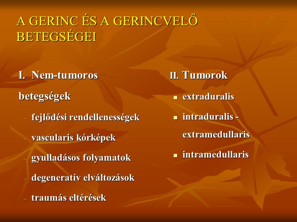 A GERINC ÉS A GERINCVELŐ BETEGSÉGEI I. Nem-tumoros betegségek – fejlődési rendellenességek – vascularis kórképek – gyulladásos folyamatok – degeneratí