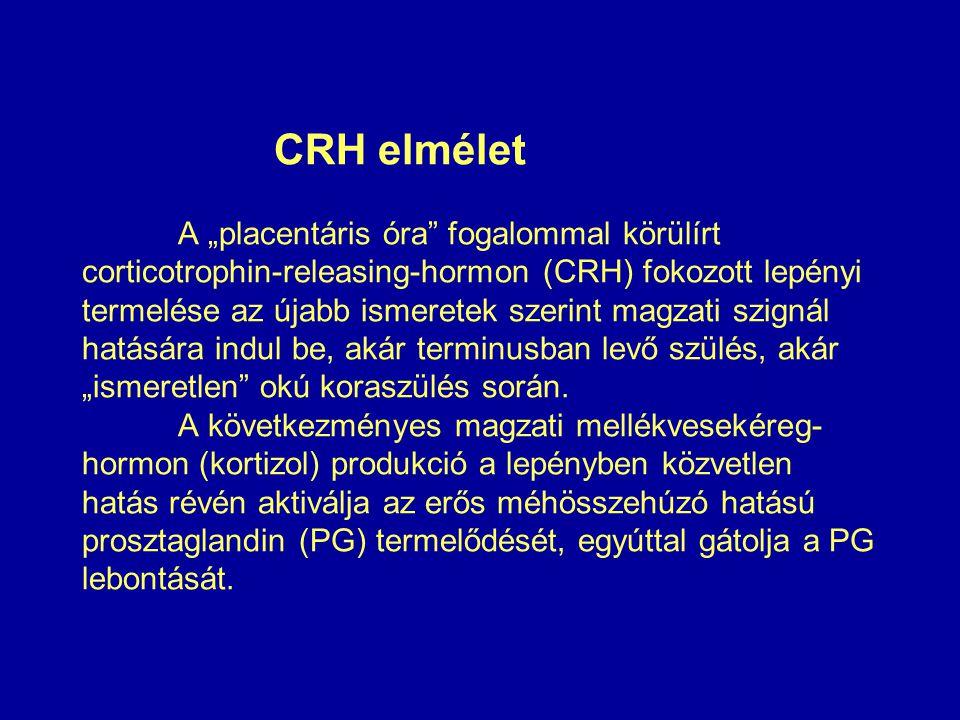 """CRH elmélet A """"placentáris óra fogalommal körülírt corticotrophin-releasing-hormon (CRH) fokozott lepényi termelése az újabb ismeretek szerint magzati szignál hatására indul be, akár terminusban levő szülés, akár """"ismeretlen okú koraszülés során."""