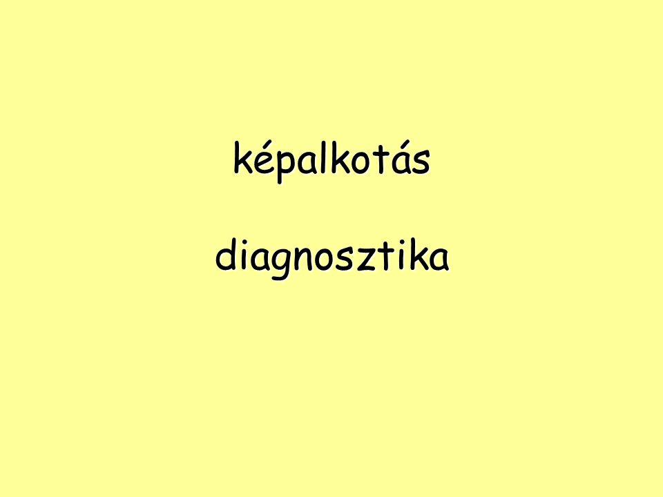NM vizsgálatok KIR KIR szívizom szívizom tüdő tüdő máj- és eperendszer máj- és eperendszer lép lép leukocyta-szcintigráfia leukocyta-szcintigráfia vese vese pajzsmirigy, mellékpajzsmirigy, pajzsmirigy, mellékpajzsmirigy, mellékvese mellékvese csontrendszer, izületek csontrendszer, izületek nyirokáramlás iránya és a nyirokcsomóáttét nyirokáramlás iránya és a nyirokcsomóáttét csontvelő csontvelő leukocyta leukocyta
