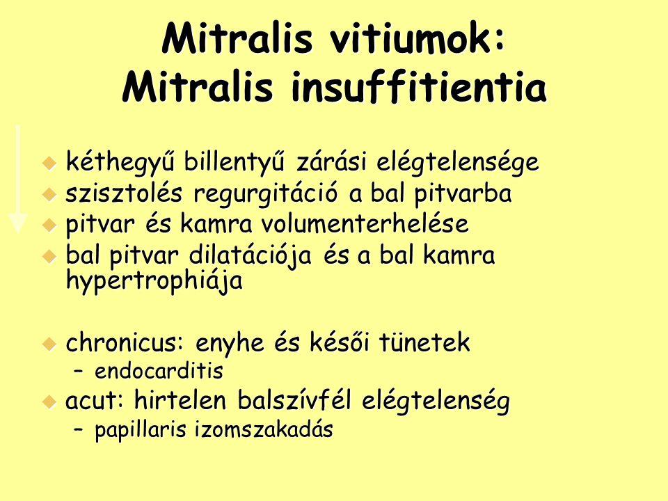 Mitralis vitiumok: Mitralis insuffitientia  kéthegyű billentyű zárási elégtelensége  szisztolés regurgitáció a bal pitvarba  pitvar és kamra volume