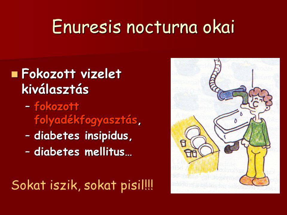 Enuresis nocturna okai Fokozott vizelet kiválasztás Fokozott vizelet kiválasztás –fokozott folyadékfogyasztás, –diabetes insipidus, –diabetes mellitus