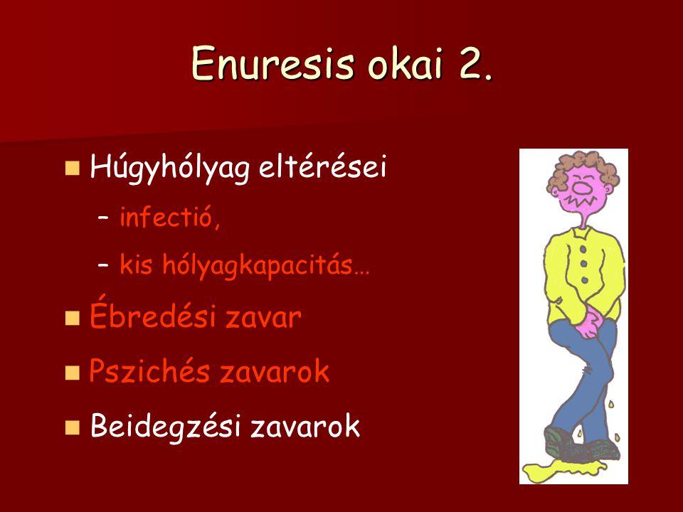 Enuresis okai 2. Húgyhólyag eltérései –infectió, –kis hólyagkapacitás… Ébredési zavar Pszichés zavarok Beidegzési zavarok