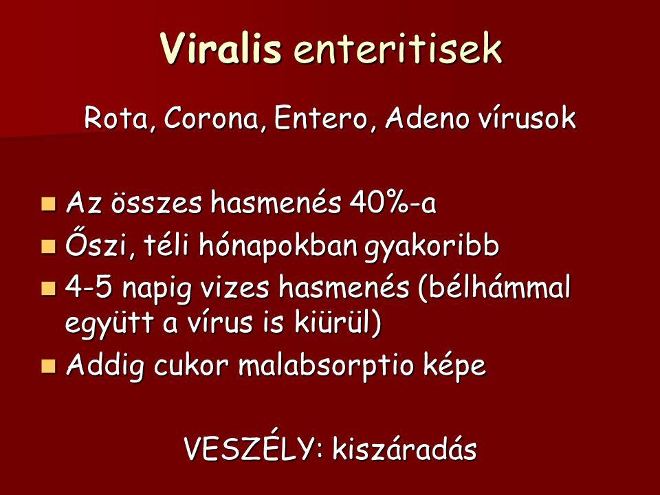 Viralis enteritisek Rota, Corona, Entero, Adeno vírusok Az összes hasmenés 40%-a Az összes hasmenés 40%-a Őszi, téli hónapokban gyakoribb Őszi, téli h