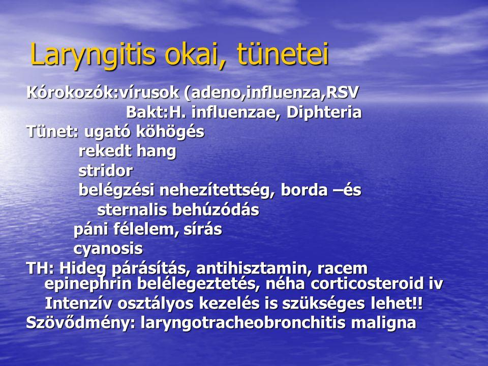 Laryngitis okai, tünetei Kórokozók:vírusok (adeno,influenza,RSV Bakt:H.