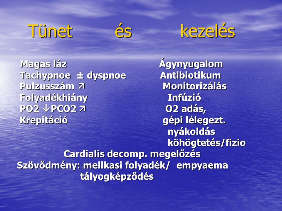 Tünet és kezelés Tünet és kezelés Magas láz Ágynyugalom Magas láz Ágynyugalom Tachypnoe ± dyspnoe Antibiotikum Tachypnoe ± dyspnoe Antibiotikum Pulzusszám  Monitorizálás Pulzusszám  Monitorizálás Folyadékhiány Infúzió Folyadékhiány Infúzió PO2  PCO2  O2 adás, PO2  PCO2  O2 adás, Krepitáció gépi lélegezt.