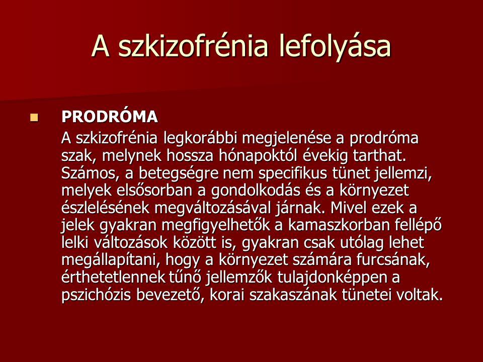 A szkizofrénia lefolyása PRODRÓMA PRODRÓMA A szkizofrénia legkorábbi megjelenése a prodróma szak, melynek hossza hónapoktól évekig tarthat.
