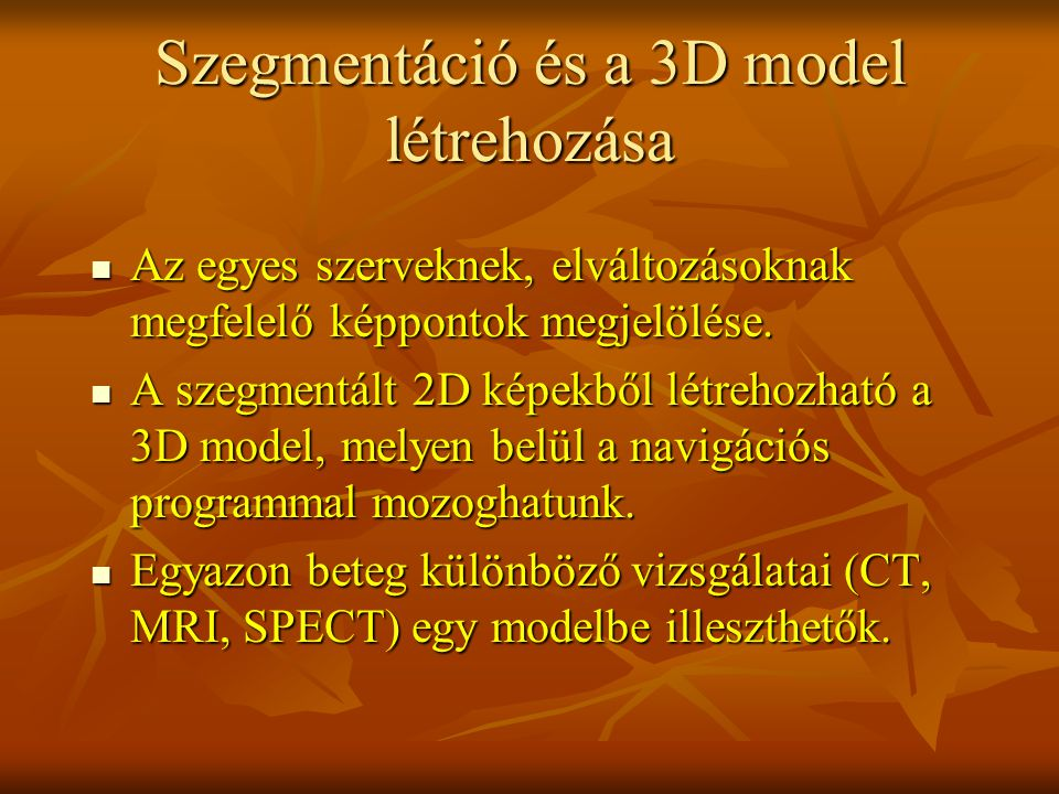 Szegmentáció és a 3D model létrehozása Az egyes szerveknek, elváltozásoknak megfelelő képpontok megjelölése. Az egyes szerveknek, elváltozásoknak megf