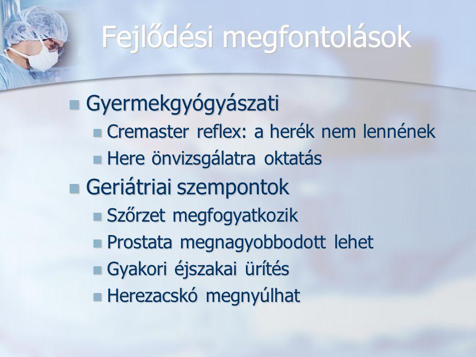 Fejlődési megfontolások Gyermekgyógyászati Gyermekgyógyászati Cremaster reflex: a herék nem lennének Cremaster reflex: a herék nem lennének Here önvizsgálatra oktatás Here önvizsgálatra oktatás Geriátriai szempontok Geriátriai szempontok Szőrzet megfogyatkozik Szőrzet megfogyatkozik Prostata megnagyobbodott lehet Prostata megnagyobbodott lehet Gyakori éjszakai ürítés Gyakori éjszakai ürítés Herezacskó megnyúlhat Herezacskó megnyúlhat