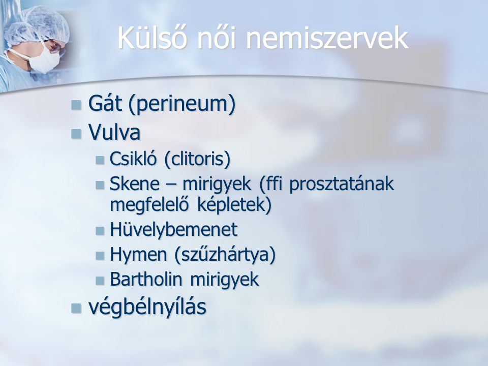 Külső női nemiszervek Gát (perineum) Gát (perineum) Vulva Vulva Csikló (clitoris) Csikló (clitoris) Skene – mirigyek (ffi prosztatának megfelelő képletek) Skene – mirigyek (ffi prosztatának megfelelő képletek) Hüvelybemenet Hüvelybemenet Hymen (szűzhártya) Hymen (szűzhártya) Bartholin mirigyek Bartholin mirigyek végbélnyílás végbélnyílás